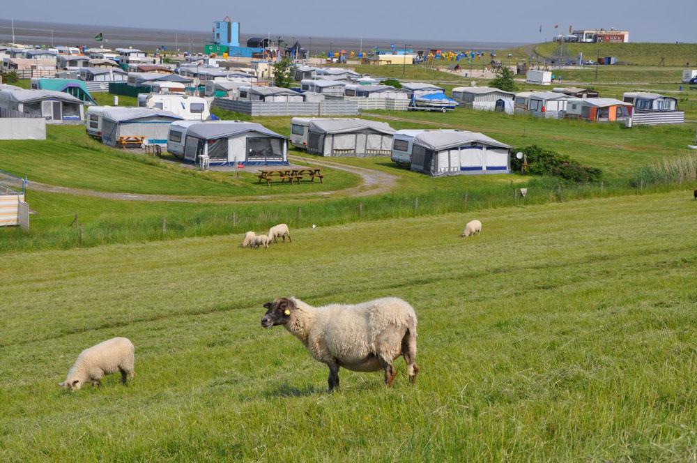 Umgebung Ferienhaus Ahlers Tossens Nordsee